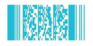 Barcode | PDF417 Code | microtech.de