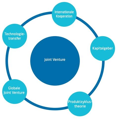 Grafik eines Joint Venture Beispiels